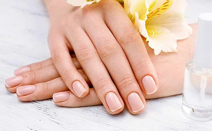 Harte Fingernägel neben einer hübschen Pflanze und Nagelhärter