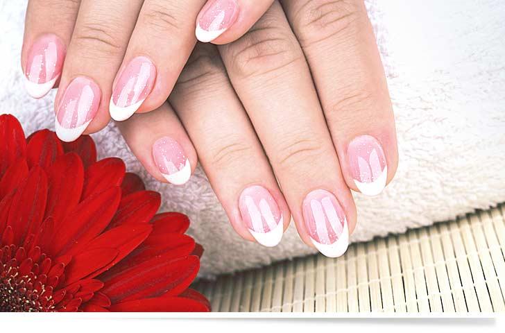 Elegante French Nails neben einer schönen Blüte