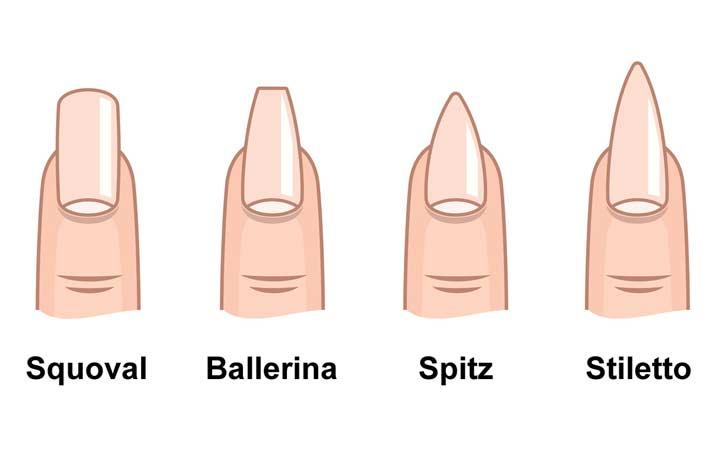 Diverse Nagelformen und die entsprechenden Namen dazu