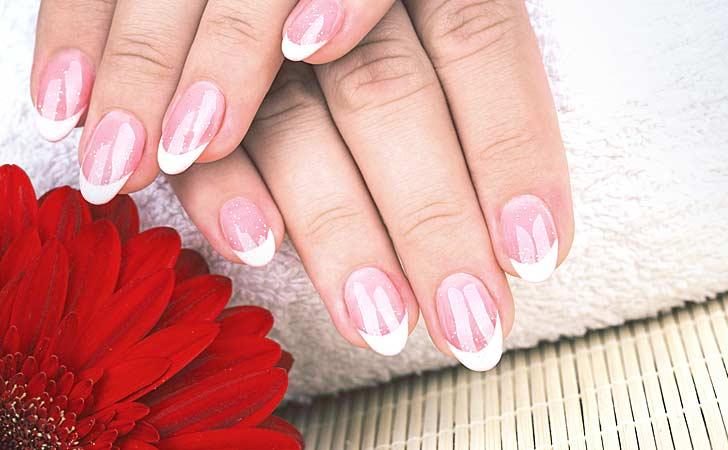 Feine Fingernägel im French Nails Look neben einer roten Blume